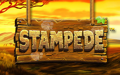 Play Stampede Video Slot At Bingospirit